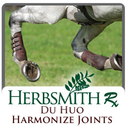 core_equine_DuHuoHarmonizeJoints