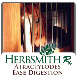 core_equine_atractylodeseasedigestion